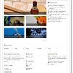 シンプルにブログを楽しめるテンプレート