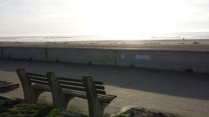 SF西海岸